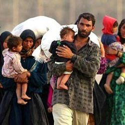 7005-refugees-250x250